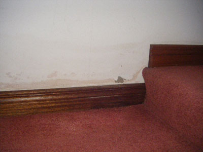 Rising dampness causing a tide mark above the skirting board
